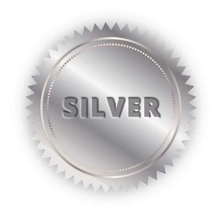 service plan silver from Benvenuti Oil in CT